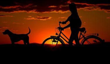 ロードバイク サイドスタンドは絶対に必要だと思う! ~貧脚ロードバイカーの憂鬱~